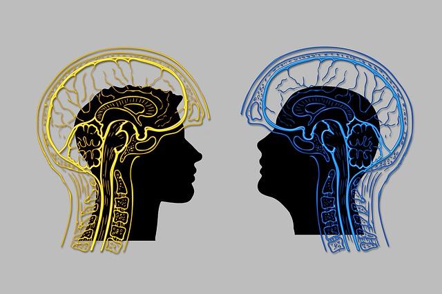 2名の男性のシルエットの上にある脳のイラスト