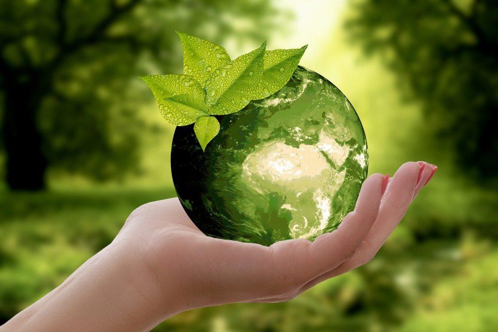 緑に満ちた地球を持つ手