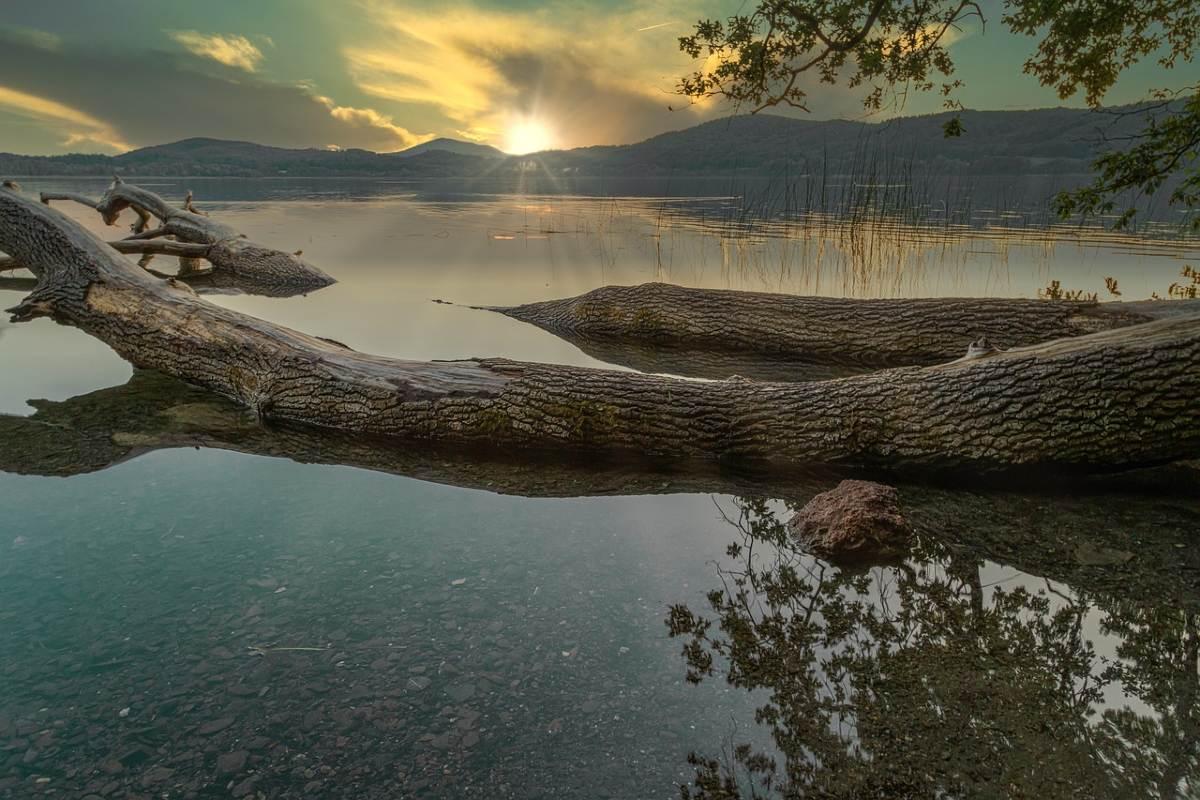 木が横たわる川と夕日